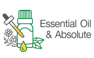Essential Oil & Absolute