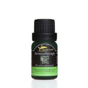Eucalyptus Globulus Essential Oil Organic USDA (น้ำมันหอมระเหยยูคาลิปตัส เกรดออแกนิค)
