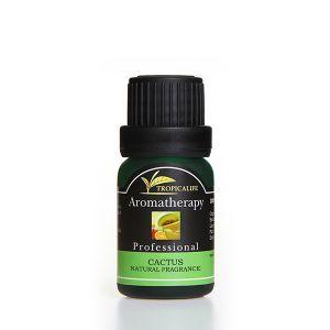 CACTUS NATURAL FRAGRANCE (น้ำหอมธรรมชาติกลิ่นแคคตัส)