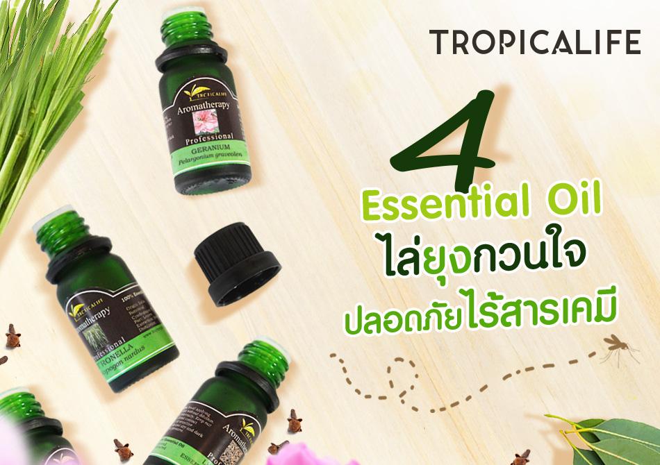 4 Essential Oil  ไล่ยุงกวนใจ ปลอดภัยไร้สารเคมี!