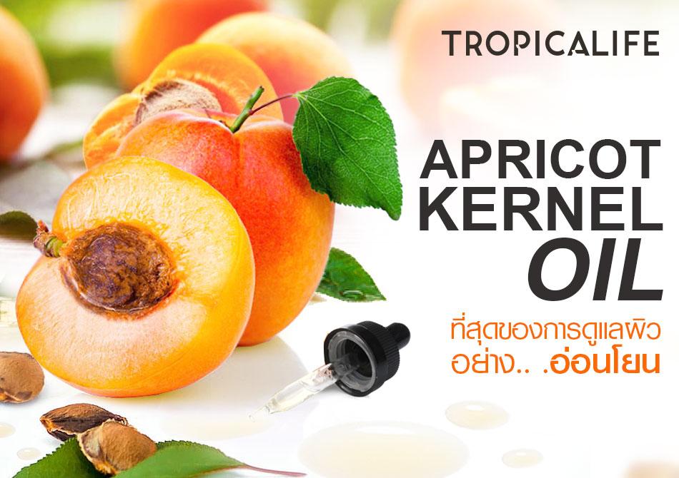 Apricot Kernel Oil ที่สุดของการดูแลผิวอย่างอ่อนโยน