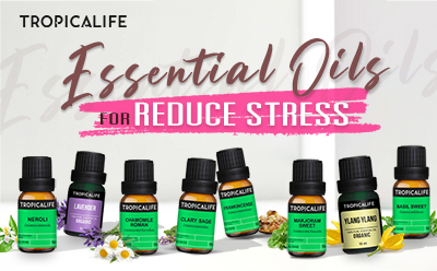 ESSENTIAL OILS FOR REDUCE STRESS (น้ำมันหอมระเหยบรรเทาภาวะเครียด)